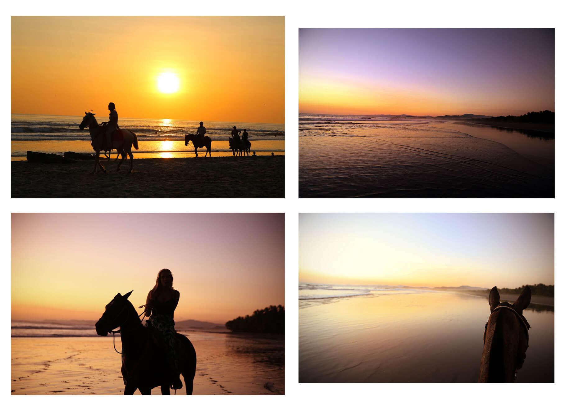 Hästridning-santa-teresa